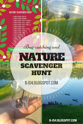 https://b-is4.blogspot.com/2016/06/bug-catching-and-nature-scavenger-hunt.html