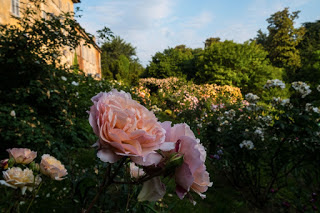 villa di rosa manerbio
