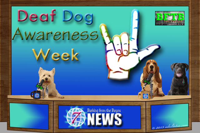 news set with Deaf Dog Awareness Week and sign for I love you