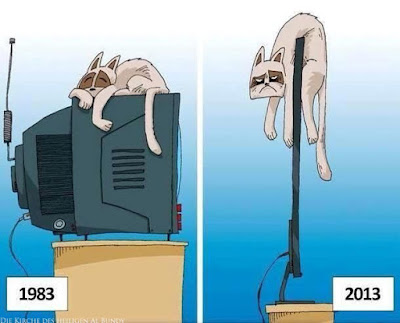 Fernseher damals und heute - Witzige Bilder Katze