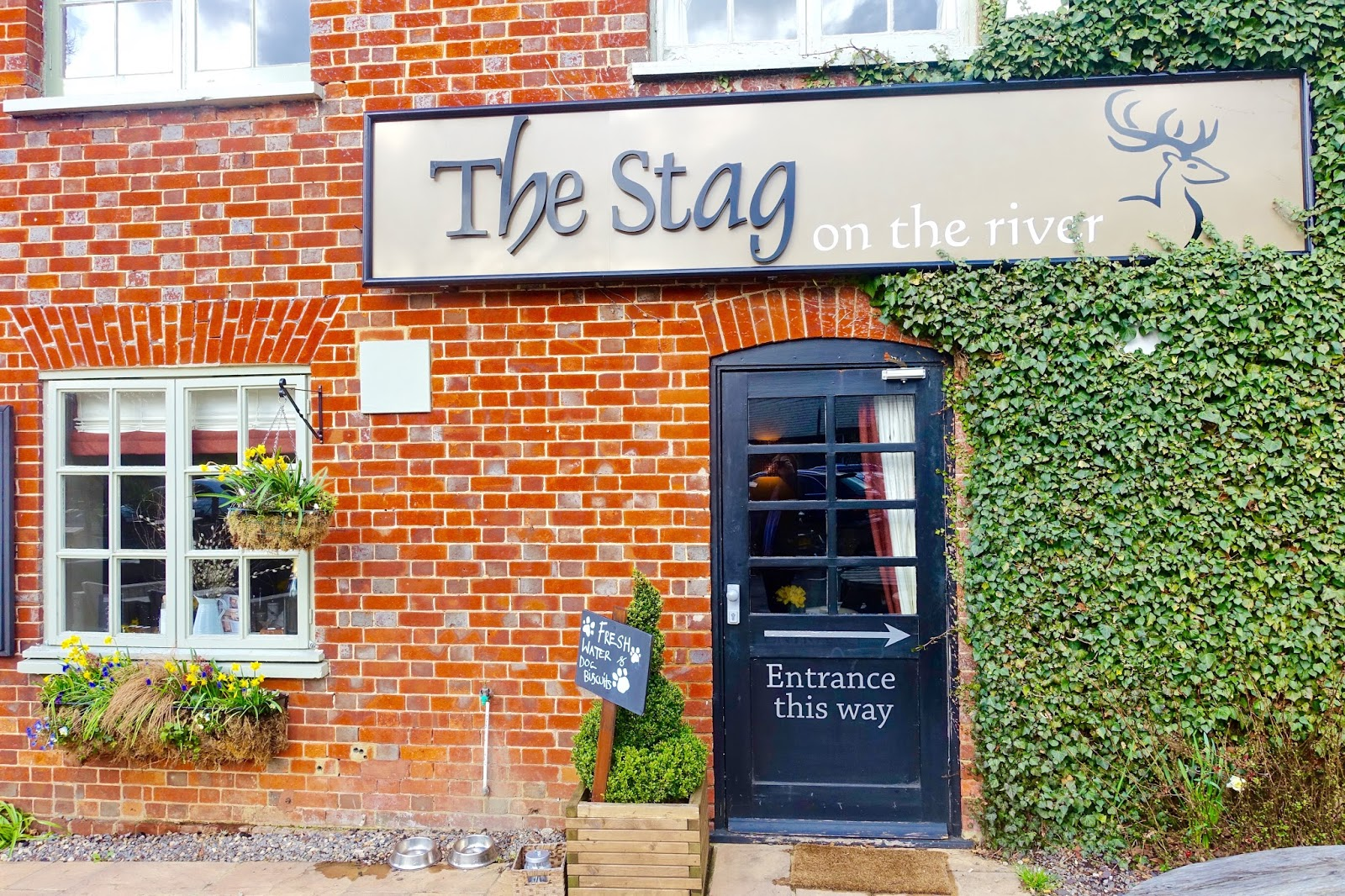 the stag on the river pub in surrey review