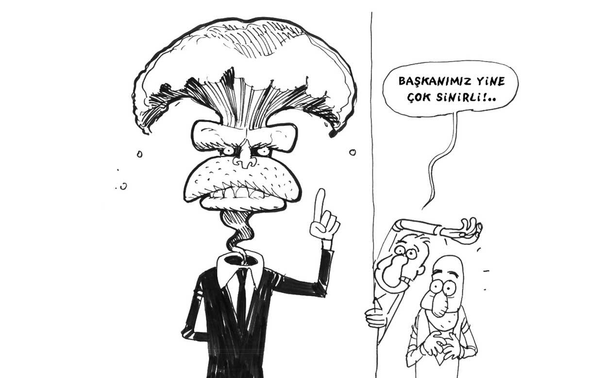 Vatandaşlık ve demokrasi karikatürleri