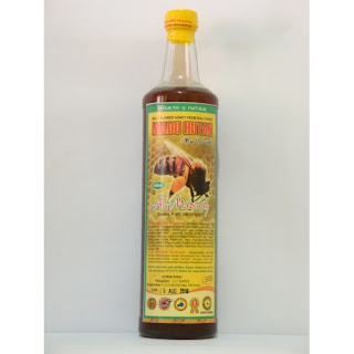 Madu Hutan Tropis Madinah Herbal  uk 650 ml