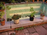 chalet en venta calle cronista revest castellon piscina2