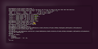 linuxExploit