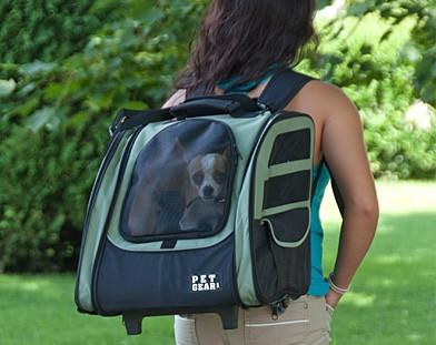 33f7c91b6f4 Backpacks for carrying dogs are becoming increasingly popular, especially  in the US. They can now be found in many styles and designs to suit not  only the ...