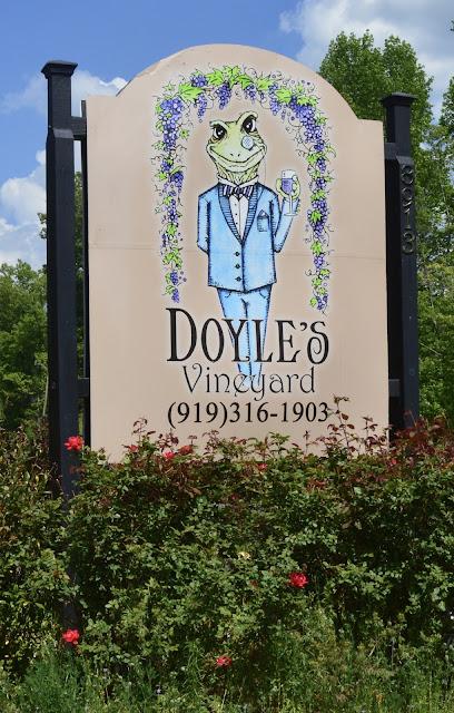 Doyles vineyard durham nc
