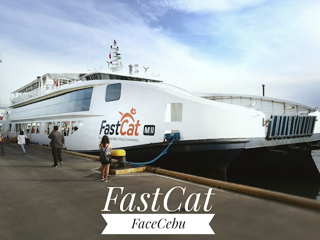FastCat by FaceCebu