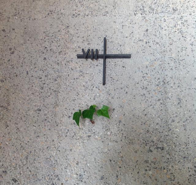 Hiedra en el muro