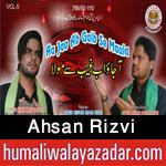http://www.humaliwalayazadar.com/2016/09/ahsan-rizvi-nohay-2017.html