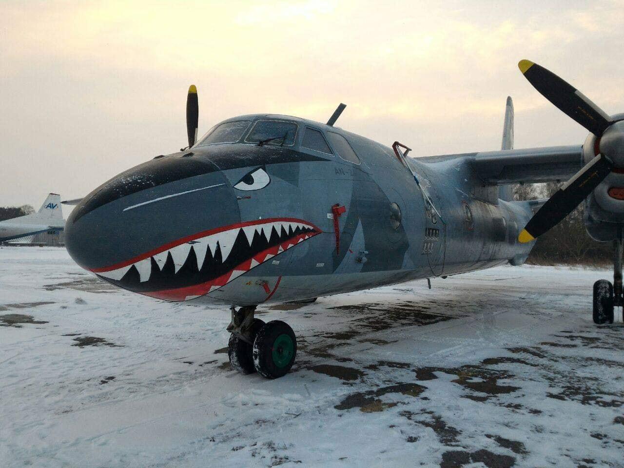 Літак «Нестримних» купила українська авіакомпанія