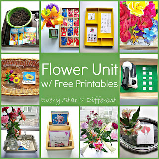 Flower themed learning activities with free printables.