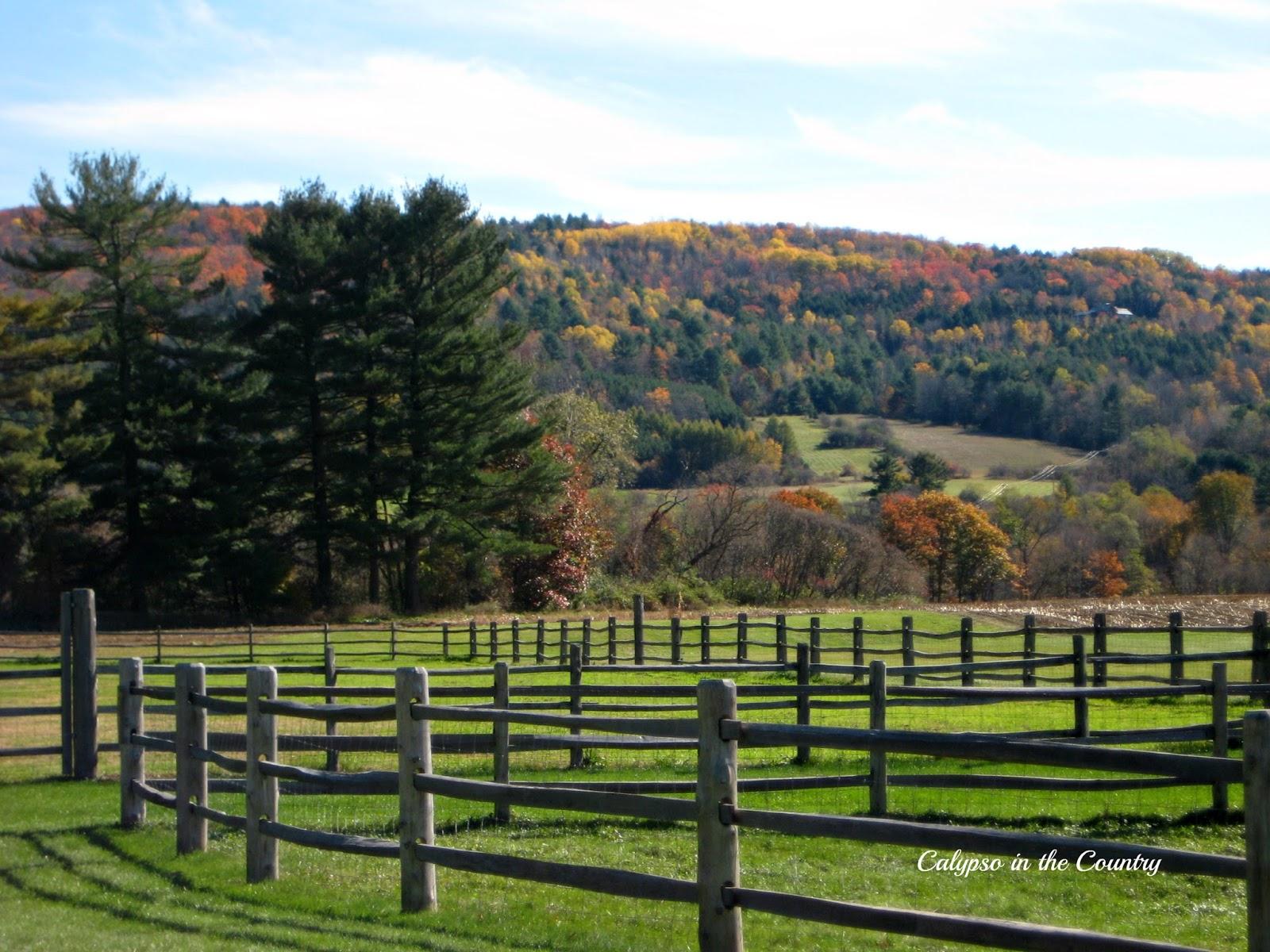 Vermont in the Fall - Billings Farm, Woodstock, VT