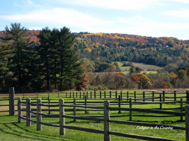 Vermont in the Fall - Billings Farm, Woodstock, VT