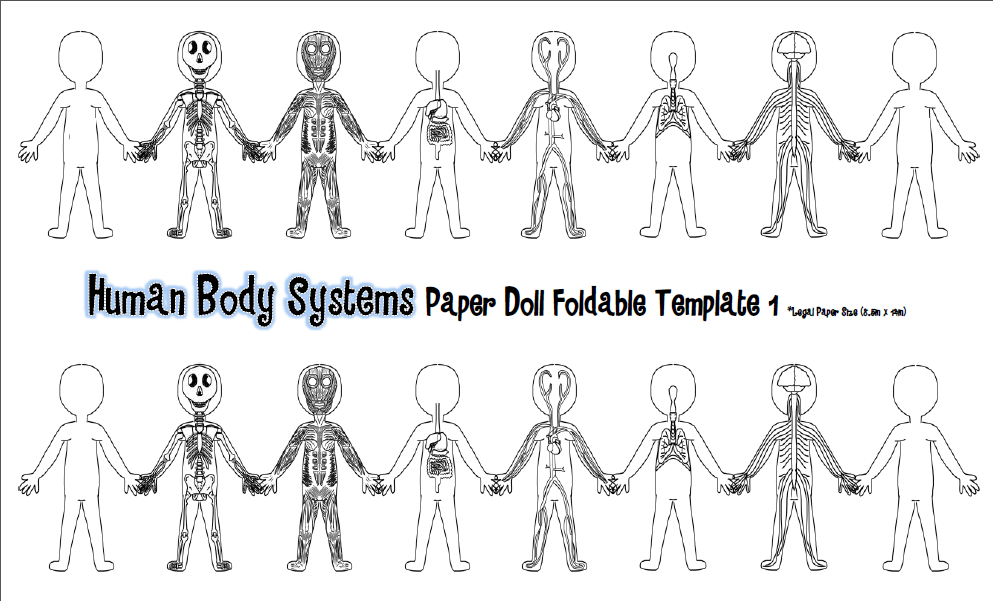 Tangled with Teaching: Hooray for the Humans! {Human Body ...