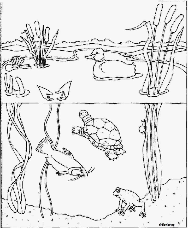 Didi coloring Page