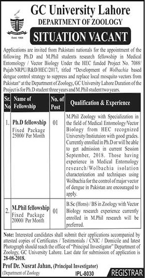 Latest Jobs in GC University Lahore for Ph.D and M.Phill Fellowship