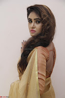 Sony Charistha in Lovely Brown Saree and Choli Spicy Pics ~  Exclusive 12.JPG