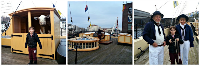 SS Great Britain Deck, Complete with Cow!