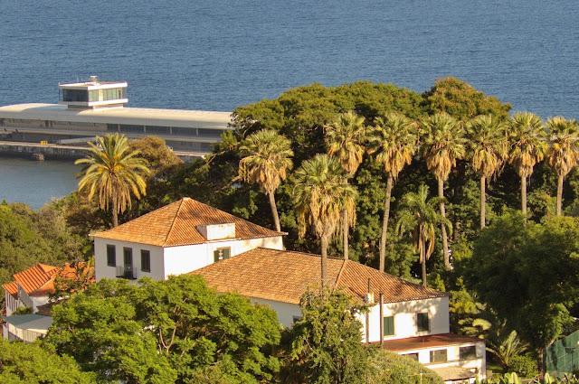 palmeiras junto a um edifício histórico