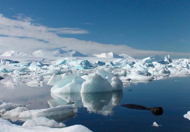 ذوبان جبال الجليد