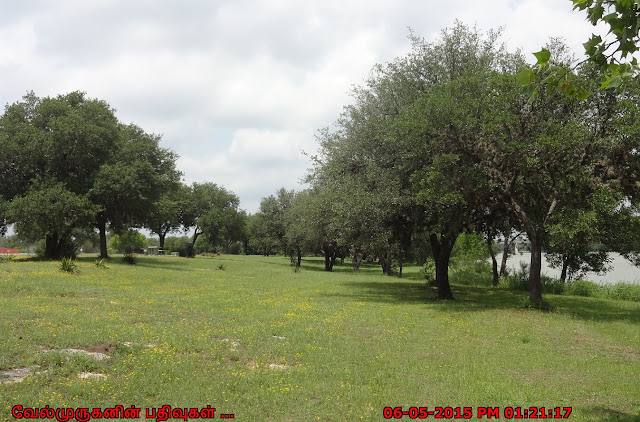 Pedernales Falls State Park Texas