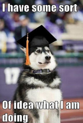 Funny dog pictures : I have to look smart