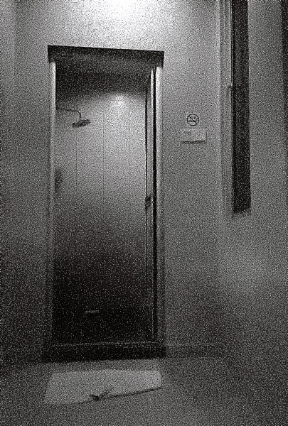 Images On Expired Film: Black and White on the Pen EF 01