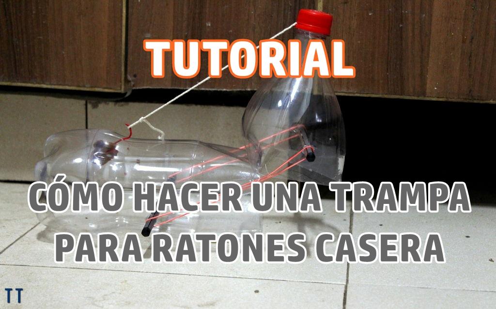 Ratones en casa que hacer imagen titulada make rat poison for Trampas para ratones sin matarlos