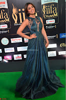 Shriya Saran in Beautiful Transparent Dark Gown IIFA Utsavam Awards 2017 041.JPG