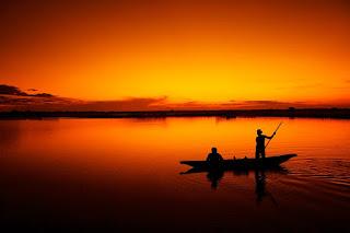 Usaha Budidaya Ikan Yang Paling Menguntungkan Saat Ini