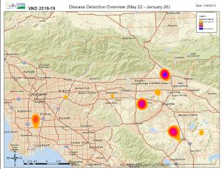 California Flu Map on