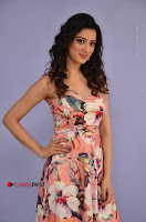 Actress Richa Panai Pos in Sleeveless Floral Long Dress at Rakshaka Batudu Movie Pre Release Function  0009.JPG
