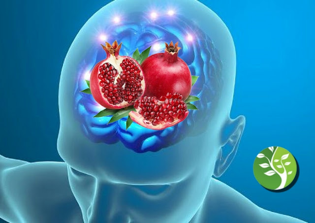 الرمان يساعد في سرعة الشفاء من أثار السكتة الدماغية ويعزز وظائف المخ