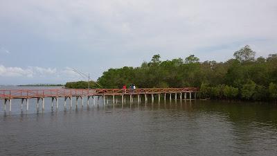 Marove merupakan tanaman rawa yang tumbuh ditepi sungai yang tujuanya untuk menahan abrasi namun selain  itu tanaman mangrove dijadikan sebagi obyek wisata yang tak kalah indah dan menarik karena letaknya di dekat muara sungai dan lautan apalagi jika pada sore harinya keindahan semakin terlihat jelas saat  sinar sunset  yang menyinari Air muara sungai.W