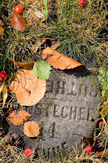 Graceland Cemetery, fall 2013