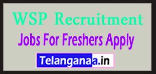 WSP Recruitment 2017 Jobs For Freshers Apply
