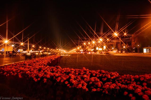 Кутузовский проспект ночью фото