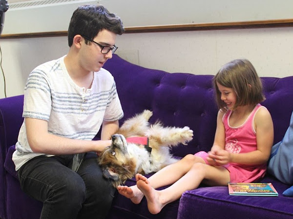 Therapy Dogs Help Children With Autism Cope With Dentist Visits