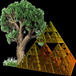 As árvores do conhecimento e as pirâmides da ciência ficam paralelas.