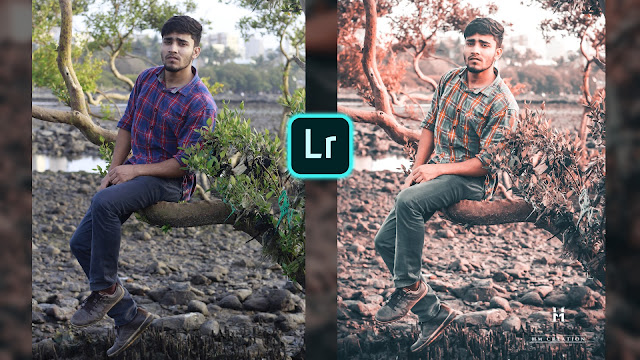 lightroom mobile presets, lightroom presets, lightroom xmp presets, lightroom mobile free presets,