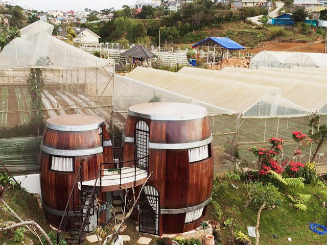 Wine Valley Homestay in Da Lat 3