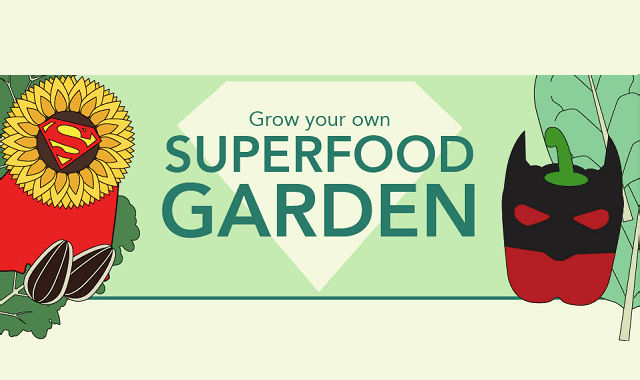 Grow Your Own Superfood Garden