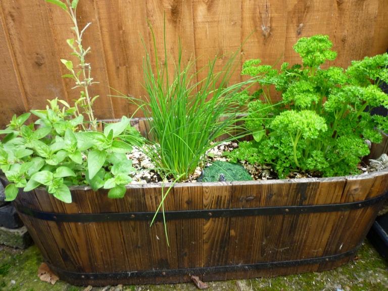 Design Your Own Vegetable Garden Online