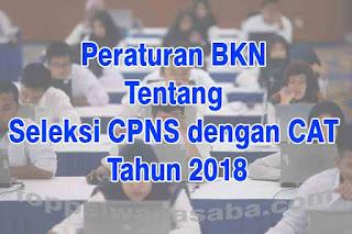 Peraturan BKN RI Nomor 8 Tahun 2018 Tentang Prosedur Penyelenggaraan Seleksi CPNS dengan CAT Tahun 2018