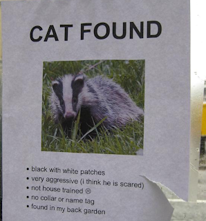 found cat is badger fail sign