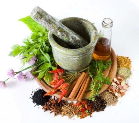 Obat - obatan traditional Dan Manfaatnya