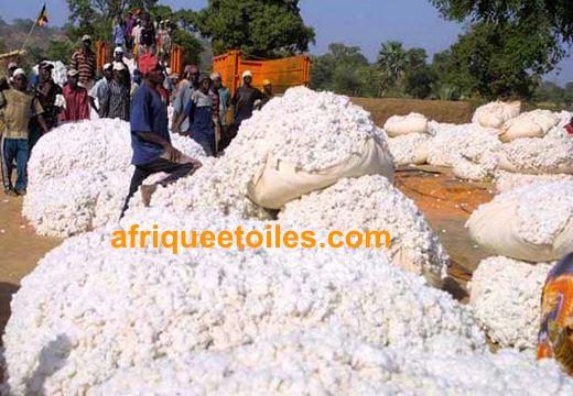 cote-ivoire-prix-coton