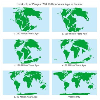 evolución de los continentes