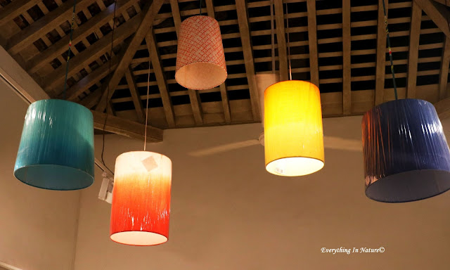 hanging lamp decor - everything in nature